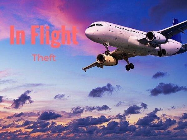 Beware Of In Flight Theft {On Your Next Flight}