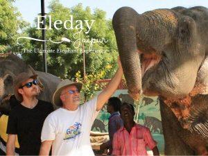 Jaipur Elephant Parks {Eleday Elephant Sanctuary}