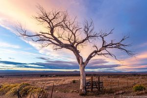 A Beginner's Guide to Landscape Photography