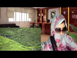 Pakistani React To | Malaysia Vacation Travel Guide  Expedia | Full Video