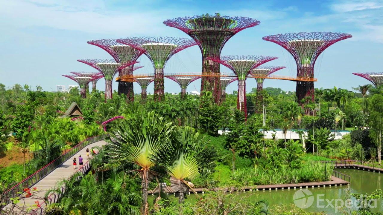 Singapore Video Travel Guide | Expedia Asia