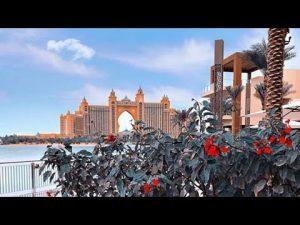 #imjzackvlog Dubai Vacation Travel Guide | Expedia