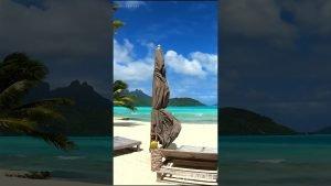 Private Island 🏝Tropical Beach Walk | Motu Tane, Bora Bora, French Polynesia 🇵🇫 4K HD Travel #shorts
