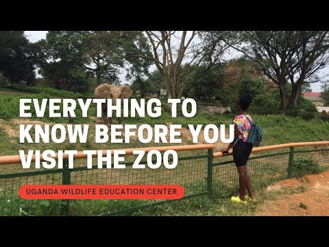 UGANDA WILDLIFE EDUCATION CENTER/ZOO |WHAT TO KNOW BEFORE VISITING IT [Foreign tourists]