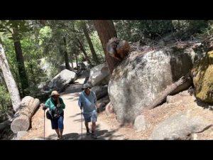 EP 11: Yosemite National Park